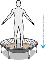 A graphic representation of the downward force exerted on the body when exercising on a bellicon® mini trampoline