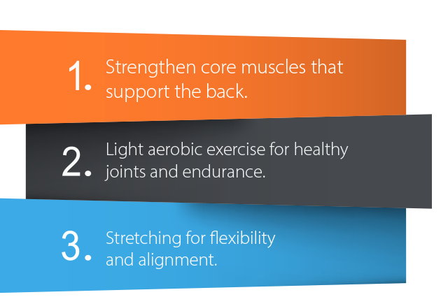 A graphic representation of the three recommended cornerstones of back exercise